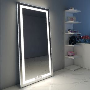 Aleesha Audio Full Length Floor Mirror